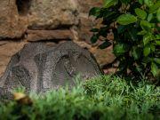 Sonance - RK 63 Granit Gartenlautsprecher